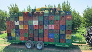 Γεωργικό πλατφόρμες-καρότσες '20 GO-GO-S 460X163 39  κλούβες πά
