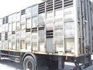 Scania '96 93 M 220 ps (143 144)-thumb-5