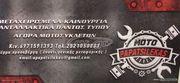 ΧΕΙΡΟΛΑΒΕΣ ΣΥΝΟΔΗΓΟΥ PIAGGIO X9 MOTO PAPATSILEKAS-thumb-2