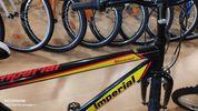 Ποδήλατο mountain '19 IMPERIAL-thumb-5