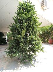 Χριστουγεννιάτικο δένδρο 2,20