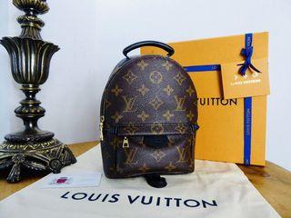 Louis Vuitton Palm Springs Mini Backpack in Monogram