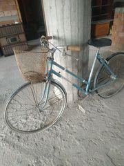 Pannonia '80