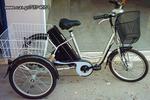 Ποδήλατο τρίτροχα '21 Sp-e-Bikes CARRIER IIΙ-thumb-1