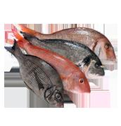 Ιχθυοπωλεία - Ψαράδικα